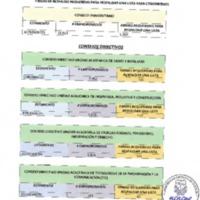 Firmas requeridas para respaldar una lista - Cogobierno y Consejos Directivos