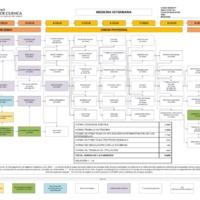 Malla curricular Carrera de Medica Veterinaria