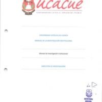 Manual de investigación institucional