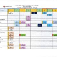 CRONOGRAMA DE VISITAS IN SITU_DIC_2018.PDF